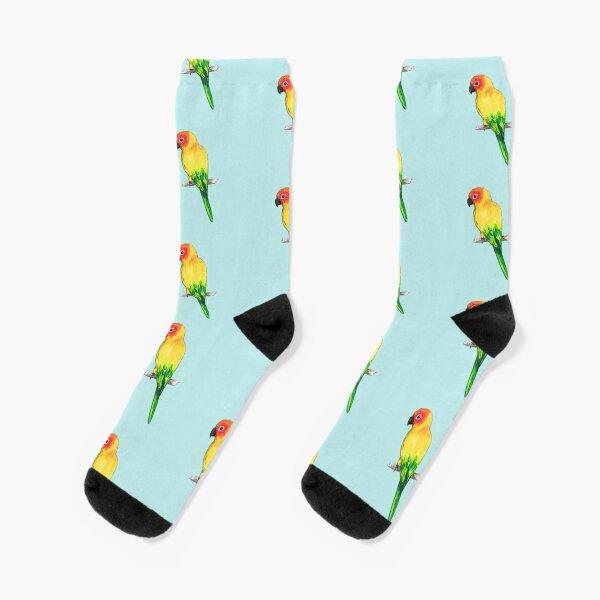 Sun conure Socks