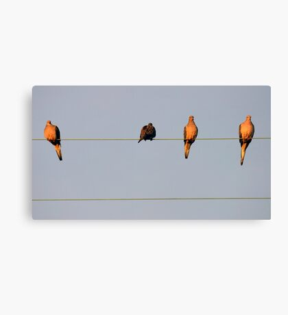 There's One In Every Crowd Canvas Print