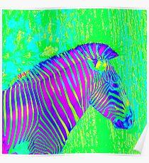 neon zebra 2 Poster