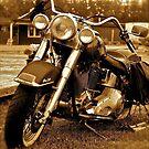 Harley  Davidson  . Views (217) , Favs (4). Thank you Easy Riders !!!! by © Andrzej Goszcz,M.D. Ph.D