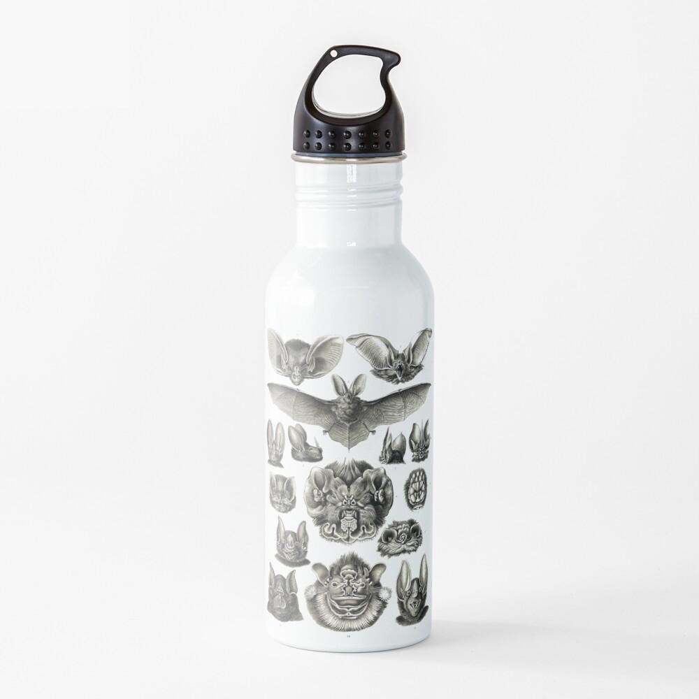 Bats! Water Bottle