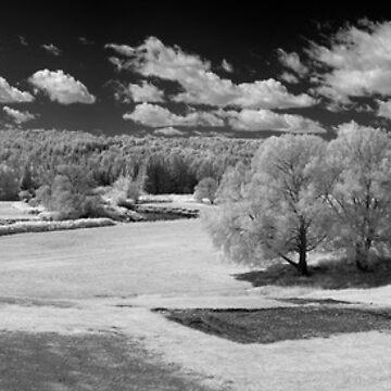 Concord VT Farmland IR by TroyDodds