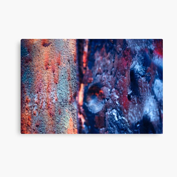 Abstract #4 Canvas Print