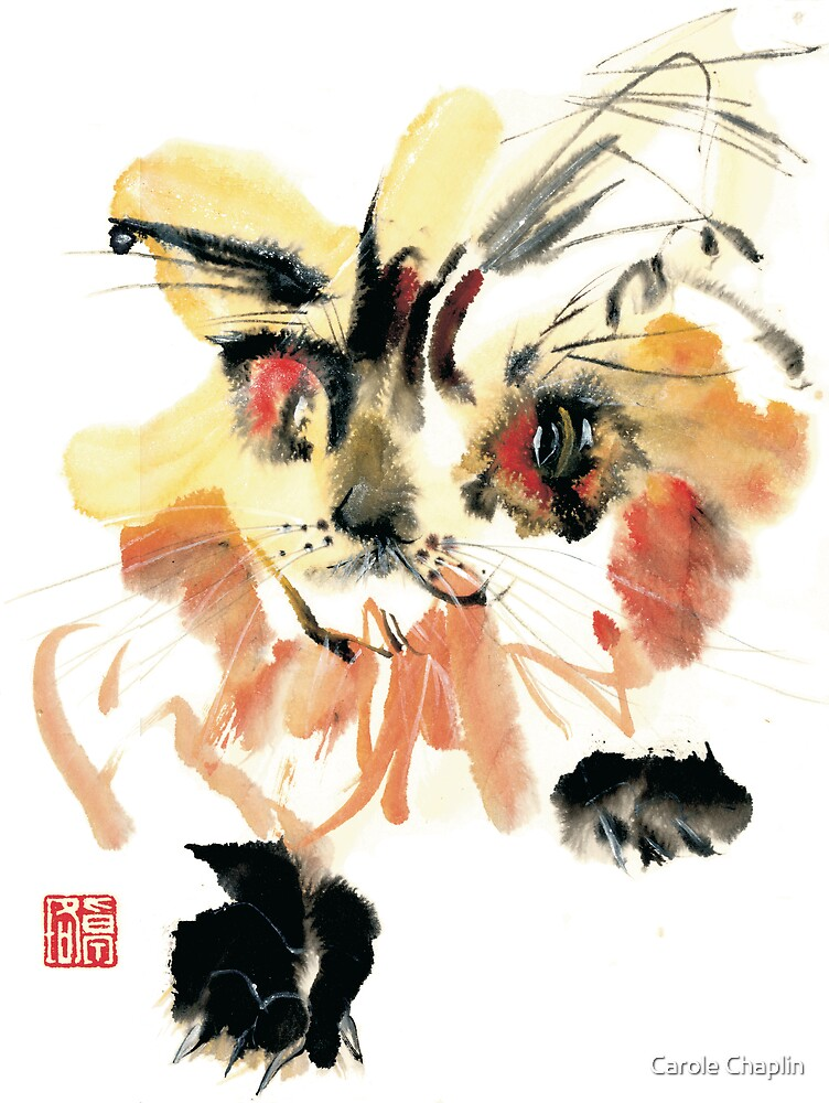 Yellow Fluffy Cat by Carole Chaplin