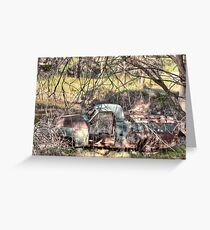 'Out To Pasture' Greeting Card