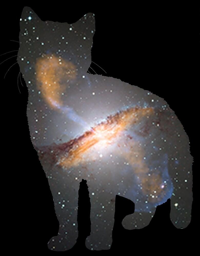 Cat Space by GeeksWhoGo