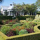 Upton Oaks, Garden, Blenheim,NZ. by johnrf