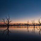 Lake Pinaroo, Cameron Corner by Malcolm Katon