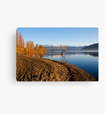 Wanaka Early Morning Canvas Print