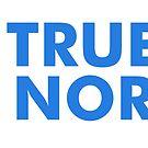 True North by bigfatdesigns