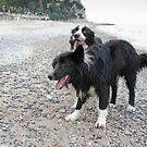 Together on the Beach by Karen Havenaar