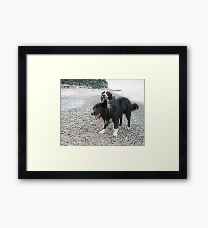 Together on the Beach Framed Print