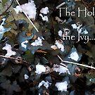 Christmas Ivy card by sarnia2