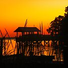 Sunset Sillouette by designerbecky