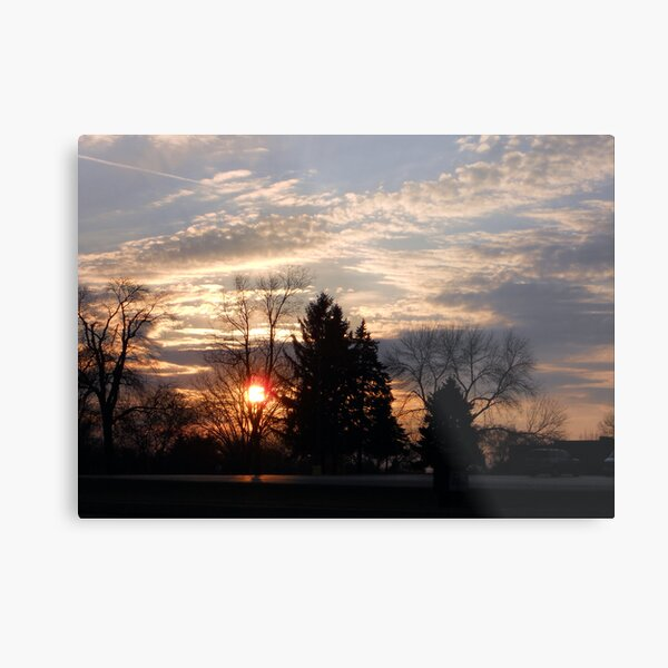 Sunset in the Suburbs Metal Print