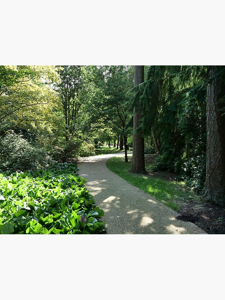 Garden path looks beautiful in sunlight by santoshputhran