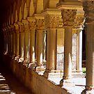 Girona Cloisters by Nigel Fletcher-Jones