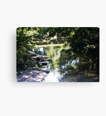 The Creek in August Canvas Print