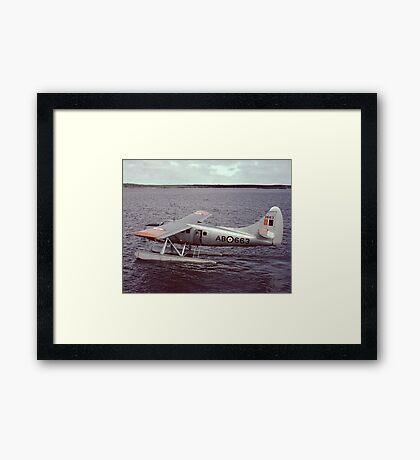 Our New Otter Framed Print