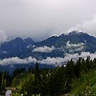 low clouds in the mt baker/snoqualmie nat'l forest by dedmanshootn