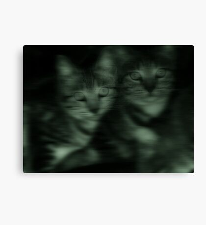 the new kids in town Canvas Print