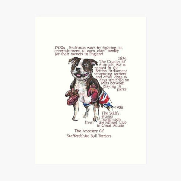 Staffordshire Bull Terrier History Art Print