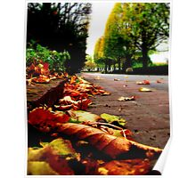 Autumn's Gutter Poster