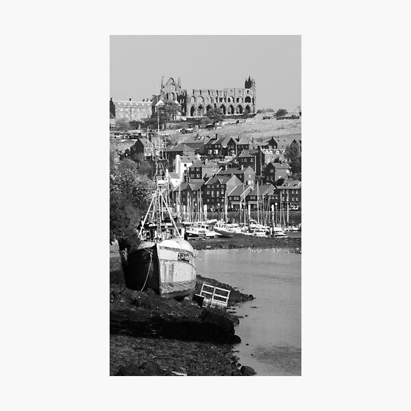 River Esk Estuary Photographic Print