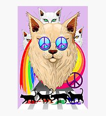 'Imagine' Cat Rainbow Peace and Love Photographic Print