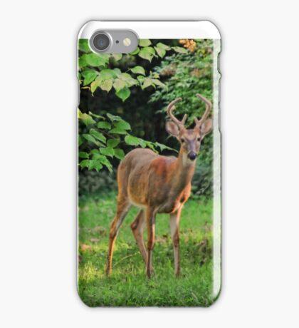 Morning Visitors iPhone Case/Skin