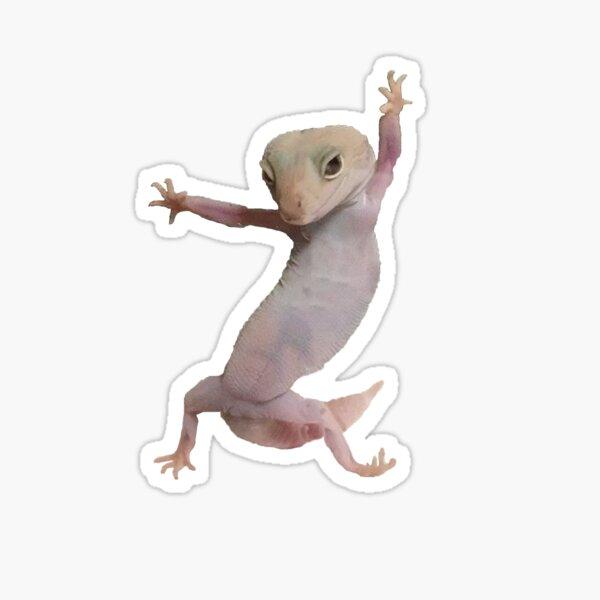 Cute Gecko  Sticker