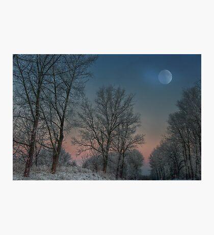 Christmas way Photographic Print