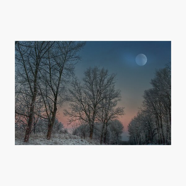 Christmas way Photographic Print