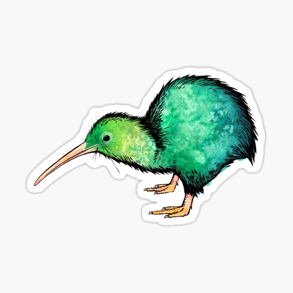 Cute Kiwi - Watercolour Art Sticker