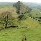 Parkhouse Hill: The Peak District by LazloWoodbine