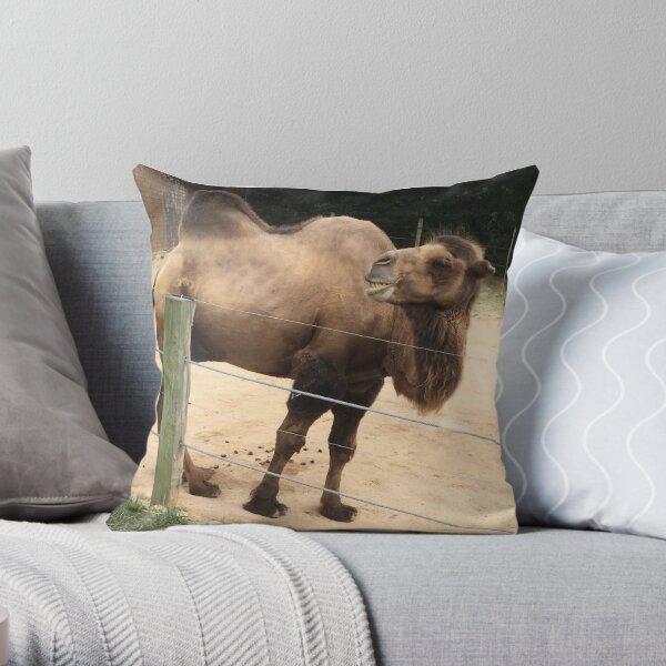 Laughing Camel Throw Pillow