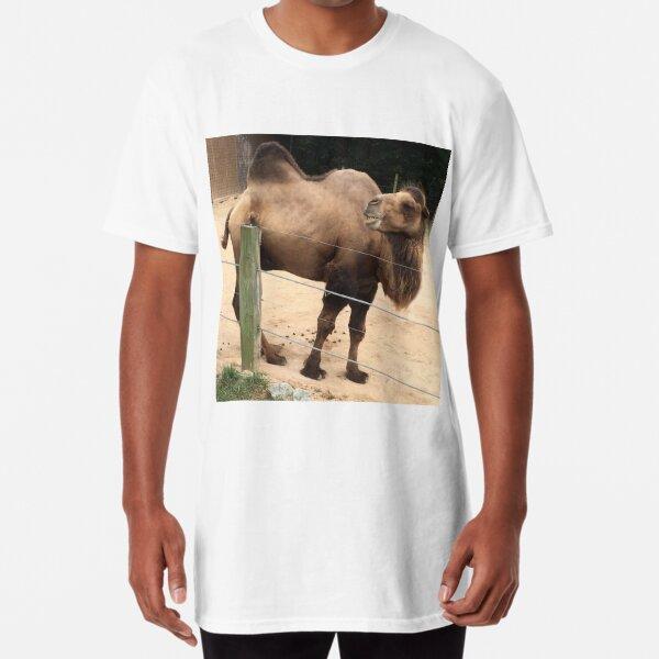 Laughing Camel Long T-Shirt