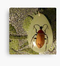 bug pendant on pashmina Canvas Print