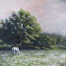 Dandelion Fields by Bruce Haney