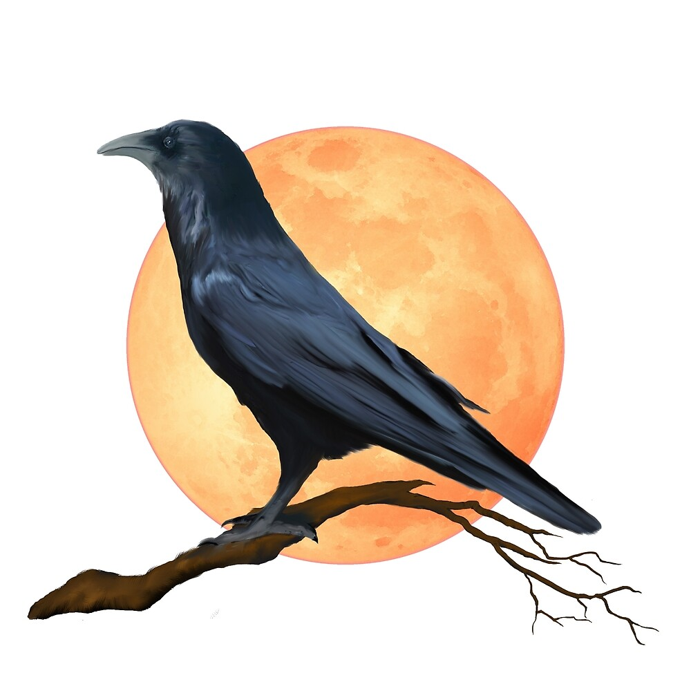 Full Moon Raven  by DolphinPod