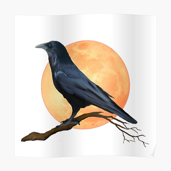 Full Moon Raven  Poster