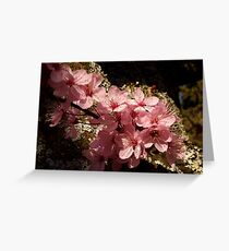 lichen ornamental cherry blossoms Greeting Card