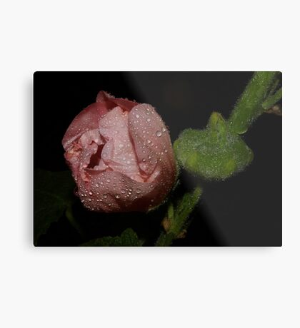 you caught me in the shower Metal Print