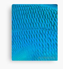 Blue Scale Canvas Print