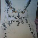 Owl in pastels  by cherie  vize