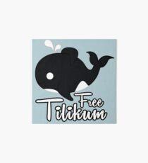 Orca Tilikum Art Board