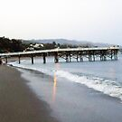 Walks on the Beach by CallinoisArt