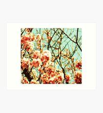 Faded Spring Art Print