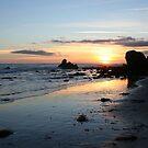 Malibu Sunset 2 by CallinoisArt