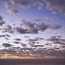 Dawn - Lake Eyre - I by Jeff Catford